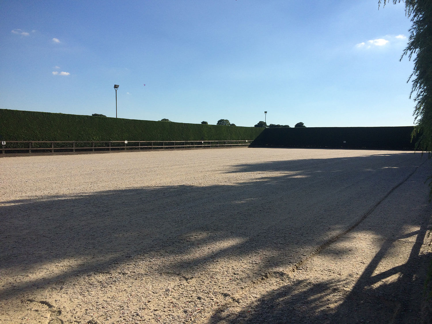 Our spacious riding arena is another stand out feature in our 5* horse facilities here at Martin's Farm